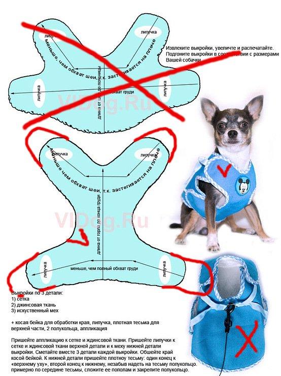 Как сделать одежду для маленькой собачки своими руками