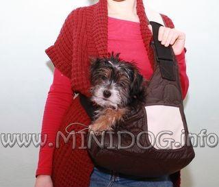 Рюкзак для собак почтальон купить рюкзак в харькове jansport