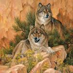 """Оригинал схемы вышивки  """"Скальные волки """".  Скальные волки, живопись, фото, животные, волки."""